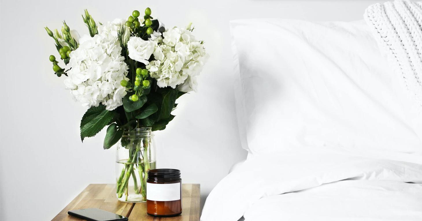 Chiardiluna - I benefici delle piante in camera da letto